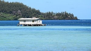Fermer perlière en Polynésie